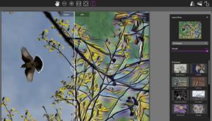 Captura de pantalla paintshop pro editor de fotos