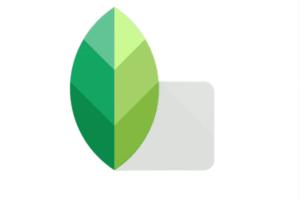 Snapseed es una aplicación de edición de fotos gratuita que viene cargada de herramientas de manipulación de imágenes
