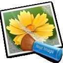 Descargar Neat Image para Windows ultima versión